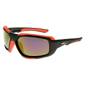Очки-маска Goggle T330-1P Polarized